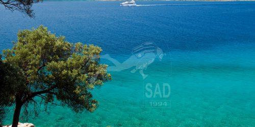 sad-galeri23